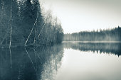 Foggy landscape with gloomy mood and lake at toned photo