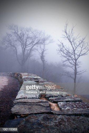 Foggy morning along Skyline Drive. : Stock Photo