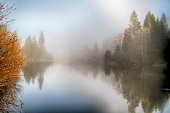 Foggy morning at forest pond and reflection
