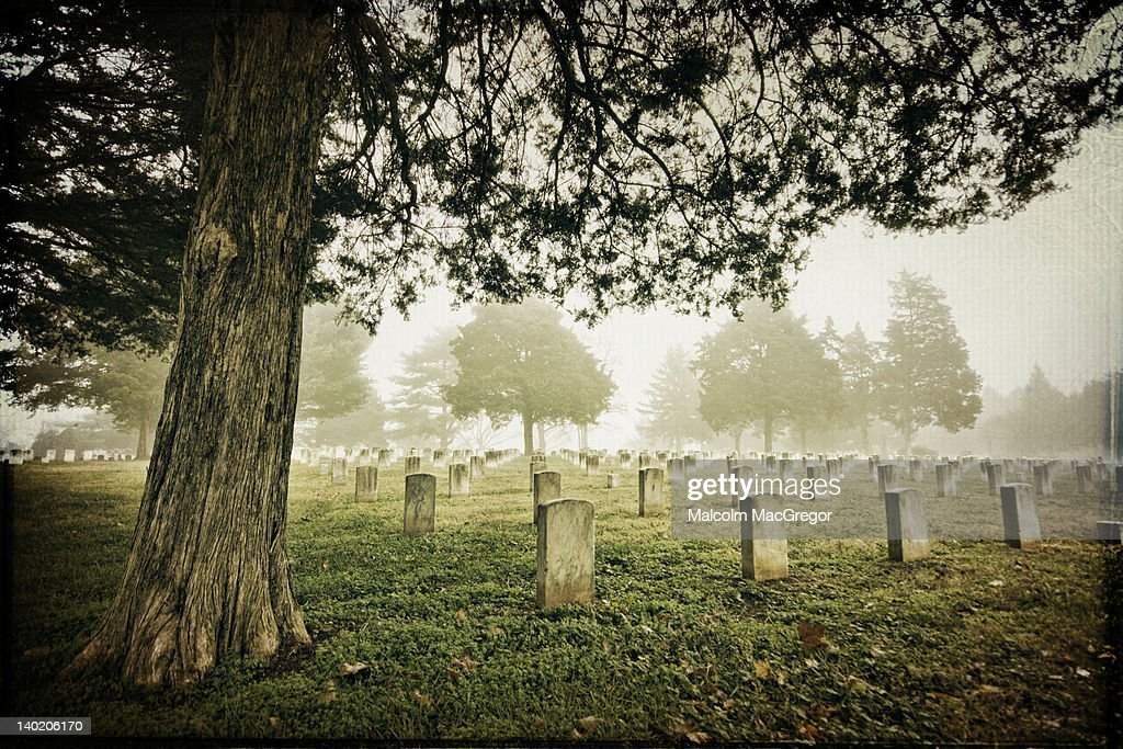 Foggy morning in civil war cemetery