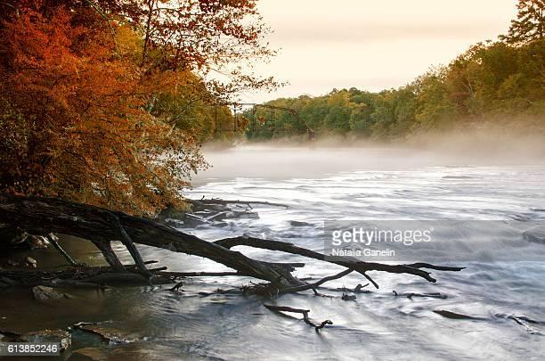 Foggy morning on the Chattahoochee river, Georgia, USA
