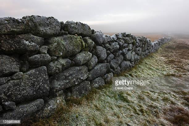 Foggy morning over stone wall in moorland field, Rippon Tor, Dartmoor, Devon, England