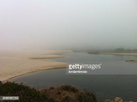 Foggy seascape/Carmel River Lagoon : Stock Photo