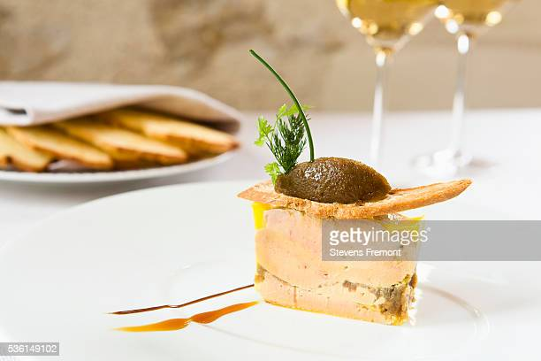 Foie gras with toast and glass of white wine in the La Maison Tourangelle restaurant. Village of Savonnières, Loire Valley, France