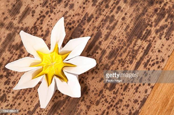 Folded paper flower on bamboo leaves