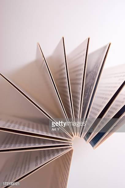 Folded paper flyer