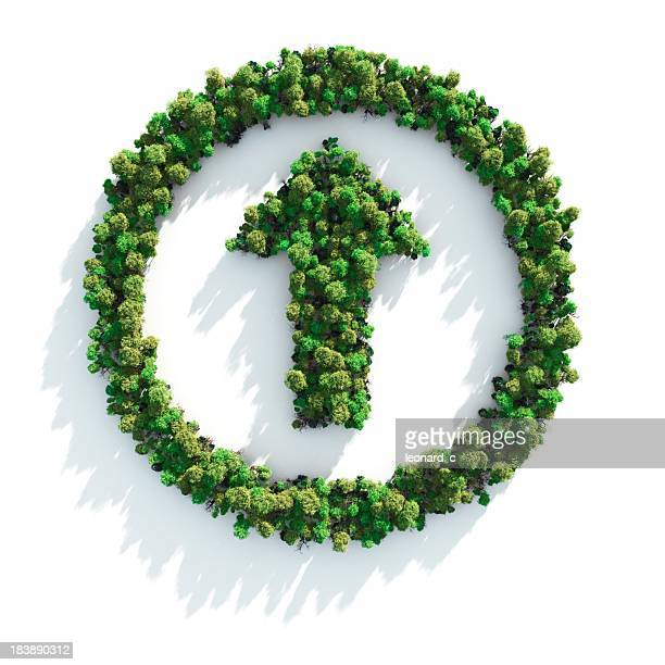 Foliage arranged in a circle with an arrow in the middle