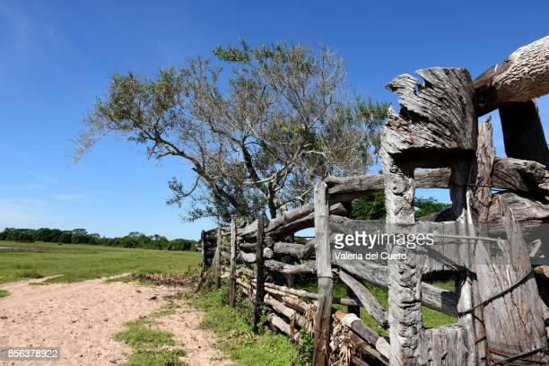 Follow fence