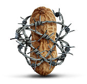 Food allergy prevention and avoiding nuts and other allergic risk ingredients caution as a peanut wrapped in barbed wire as a symbol for protection and health security in a 3D illustration style on a