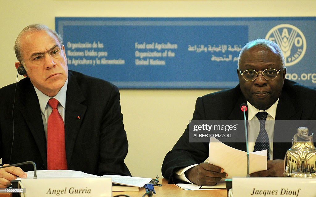 UN Food and Agriculture Organization (FAO) general director Jacques Diouf (R) and Organisation for Economic co-operation and development (OECD) general secretary Angel Gurria attend a press conference about the agricultural perspectives 2010-2019 at the FAO headquarters in Rome on June 15, 2010.