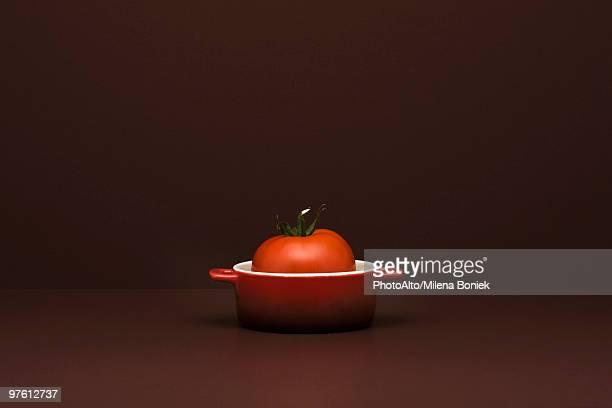 Food concept, fresh tomato in miniature pot