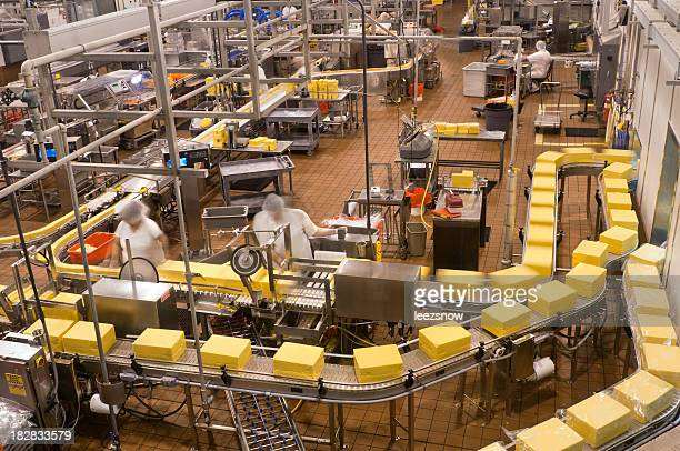 Food Factory - Packaging Cheese