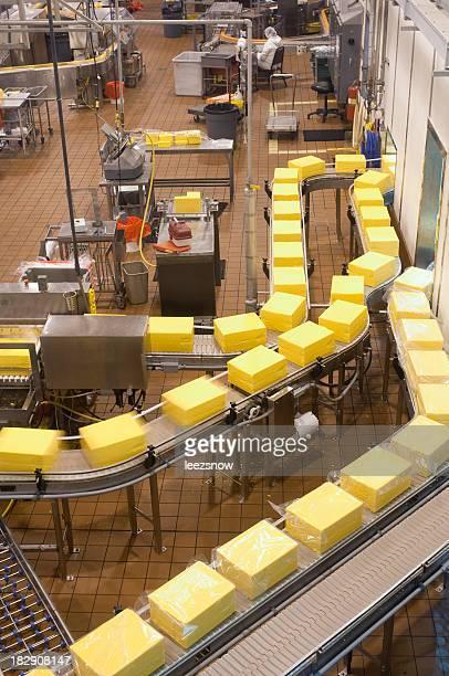 食品工場-梱包チーズ