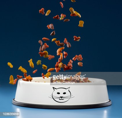 Food Falling into Cat Bowl : Stock Photo