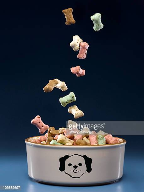 Food Falling into Dog Bowl