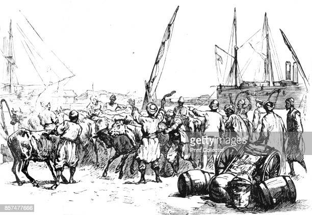 Landing Cattle at Port Said' circa 1882 Episode of the AngloEgyptian War From British Battles on Land and Sea Vol IV by James Grant [Cassell Petter...