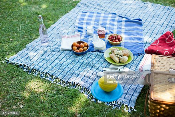 Food on blanket in grass