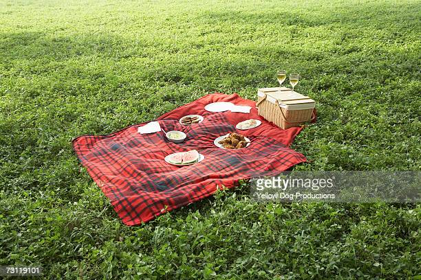 Food on picnic blanket