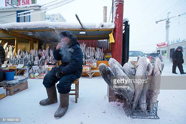 A food vendor smokes a cigarette as he sits in the cold beside a basket of frozen fish in the Krestyansky open air market in Yakutsk Sakha Republic...