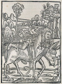 Fool on a donkey woodcut from The Ship of Fools by Sebastian Brant incunabulum 15th century