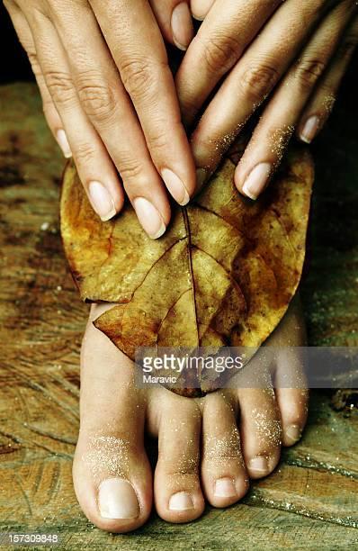 Les pieds et les mains