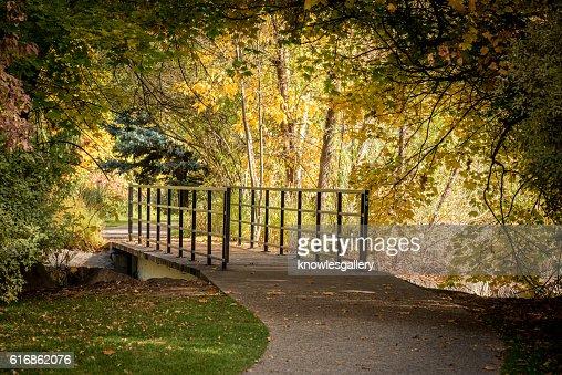 Foot bridge in a autumn city park : Stock Photo
