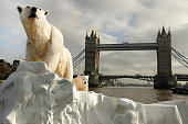 A 16 foot high sculpture of a polar bear and cub afloat on a small iceberg on the River Thames passes in front of Tower Bridge on January 26 2009 in...