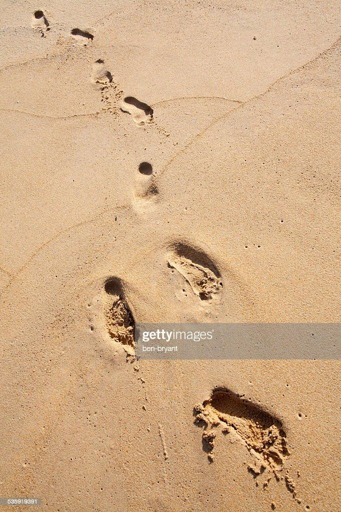 Foot prints on the beach. : Stock Photo