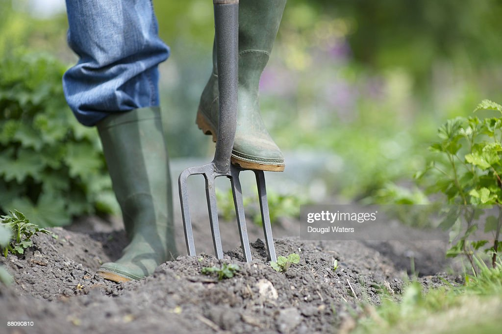 Foot pushing fork into ground.