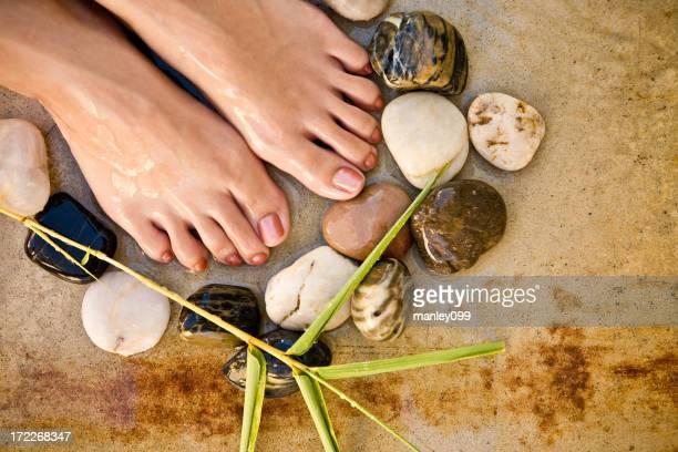 Soin de spa pour les pieds avec pierres et des végétaux (Aucun