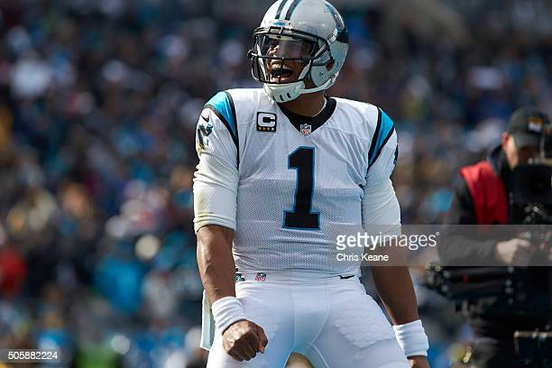 NFC Playoffs Closeup of Carolina Panthers QB Cam Newton victorious during game vs Seattle Seahawks at Bank of America Stadium Charlotte NC CREDIT...