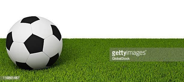 Football sur la pelouse