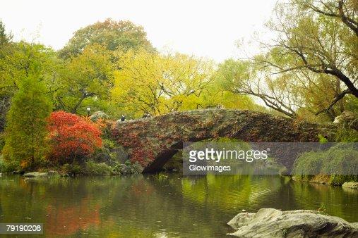 Footbridge across a river, Central Park, Manhattan, New York City, New York State, USA : Foto de stock