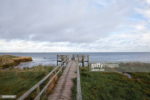 Footbridge across reed at a bay near the village Nebel on the island Amrum Wadden Sea National Park and Unesco World Natural Heritage North Sea...