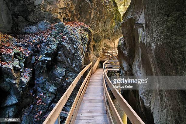 Footbridge in the Alploch canyon - Dornbirn, Vorarlberg, Austria, Europe.