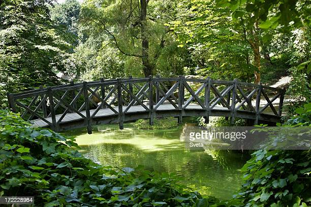 Footbridge in the Park 3