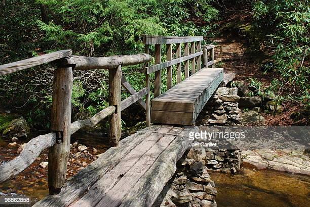 Footbridge on Appalachian Trail in Carter County, Tennessee