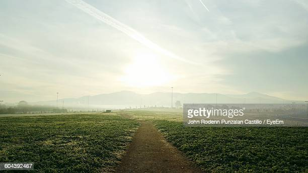 Footpath Amidst Grassy Field In Foggy Weather During Sunrise