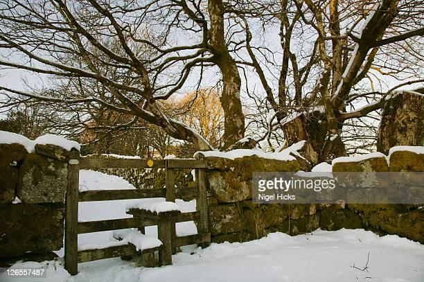 Footpath in snowy conditions, at Two Bridges, Dartmoor National Park, Devon, Great Britain.
