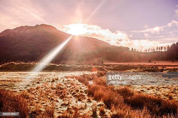 Footpath in sunshine, Glen Massan, Cowal Peninsula