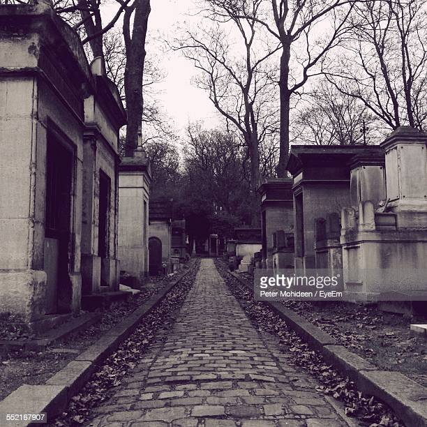 Footpath On Old Cemetery