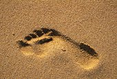 A Footprint on the Sands, High Angle View