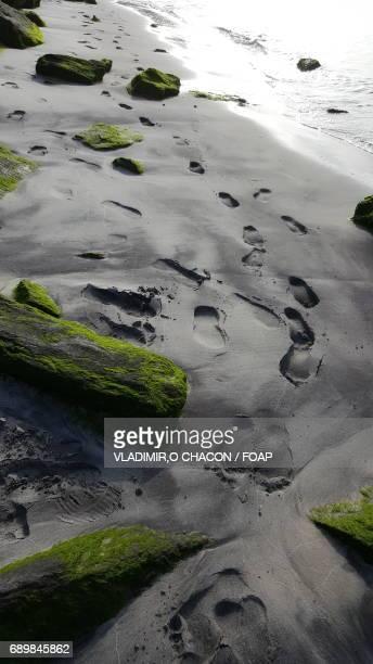Footprint on wet beach