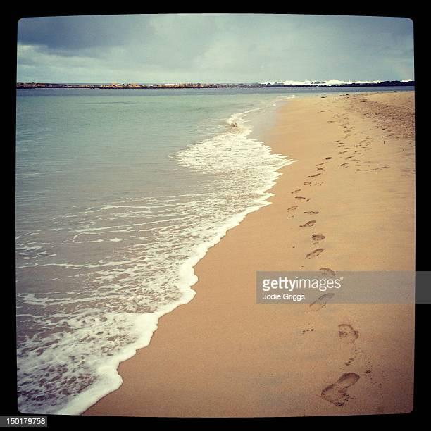 Footprints in sand along waters edge