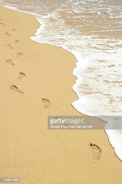Footprints in sand walking next to foamy ocean edge.