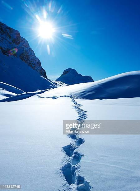 Footprints In The Snow, La Plagne