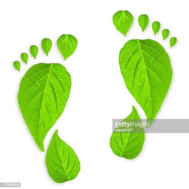 Footprints made out of green leaves on a white background