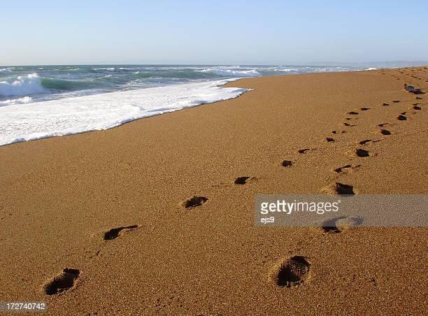 Footprints on a California  beach