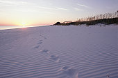 Footprints on beach at sunset, Emerald Coast, FL, USA