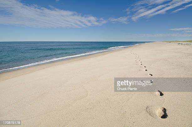 Footprints on beach, Nantucket